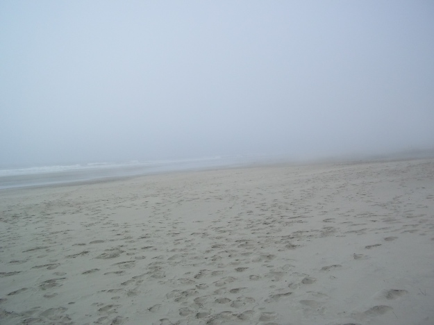 Ocean!!
