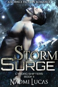 storm_surge_v3